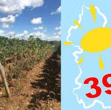 Arrêté préfectoral pour la sécheresse